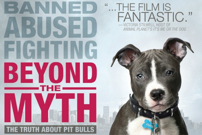 Netflix Documentaries for Vegan Viewers featuring Beyond the Myth | Your Daily Vegan
