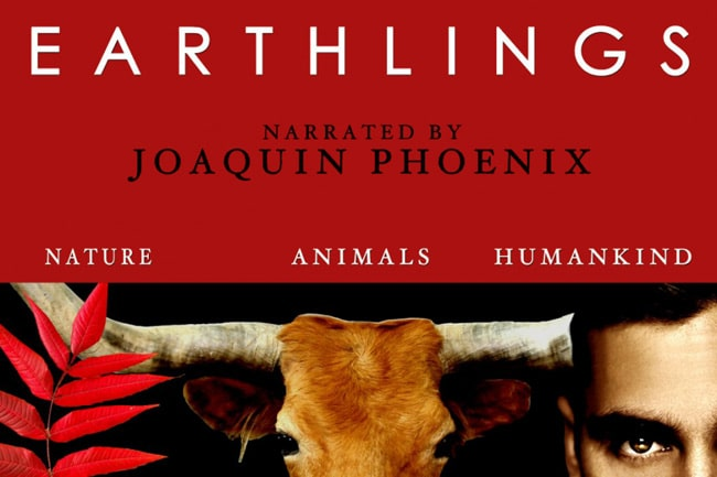 Netflix Documentaries for Vegan Viewers featuring Earthlings | Your Daily Vegan