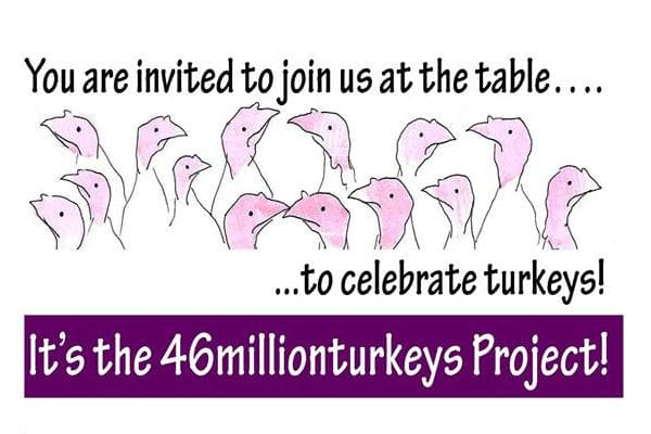 46millionturkeys Project