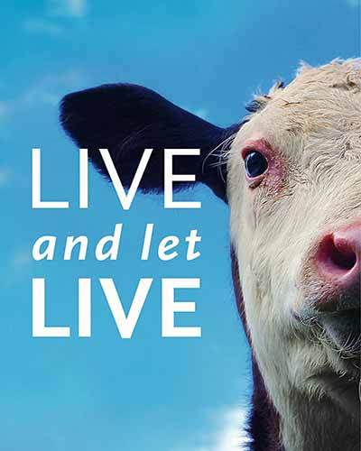 Cover for the film, Live and Let Live. Features a cow from the neck up and a blue background.