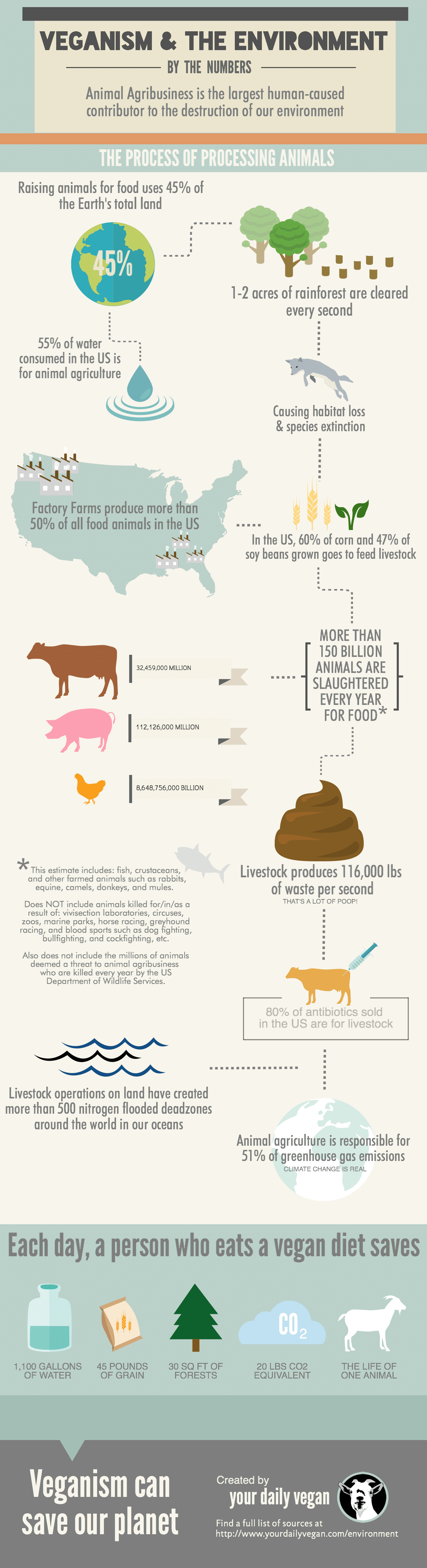 the environment and veganism infographic