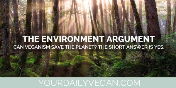 saving the environment with veganism essay Free vegetarianism papers, essays, and research papers these results are sorted by most relevant first (ranked search) you may also sort these by color rating or essay.