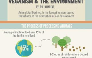 veganism-environment