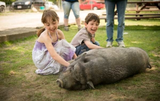 Children petting a pig at Happy Trails Animal Sanctuary