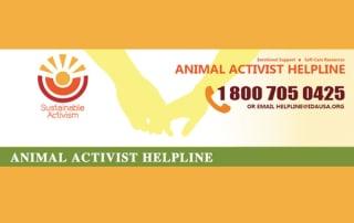 vegan hotline