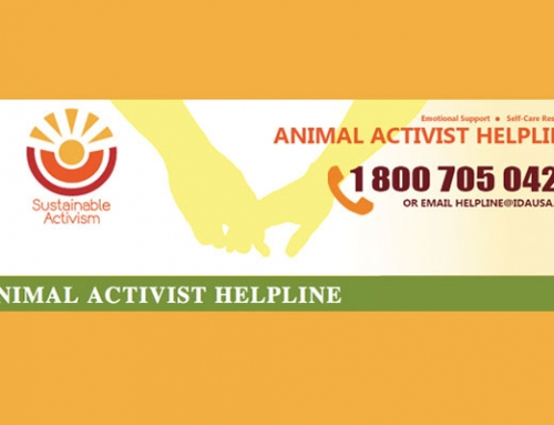 Sustainable Activism: Animal Activist Helpline Provides Support