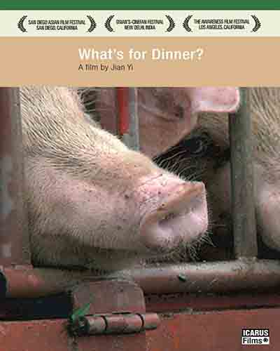Cover for the film, What's for Dinner? Features a closeup of a pigs nose through metal bars.