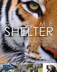 Give Me Shelter   Vegan Flicks & Movies - Your Daily Vegan