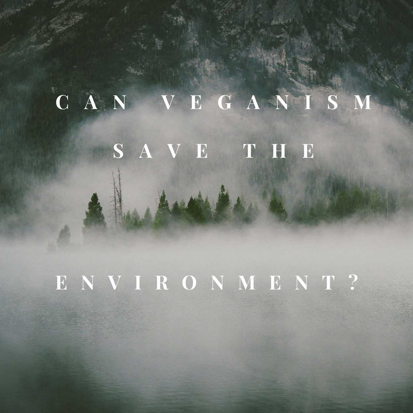veganism enviornment