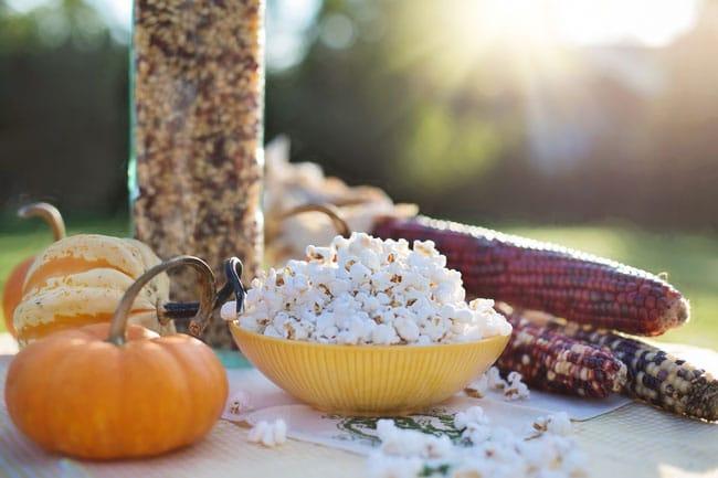 5 Netflix Documentary Picks for Vegan Viewers