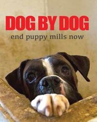 Dog by Dog - Vegan Movies   Your Daily Vegan