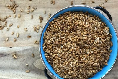 Smoky Chili Lime Sunflower Seeds Recipe   Your Daily Vegan