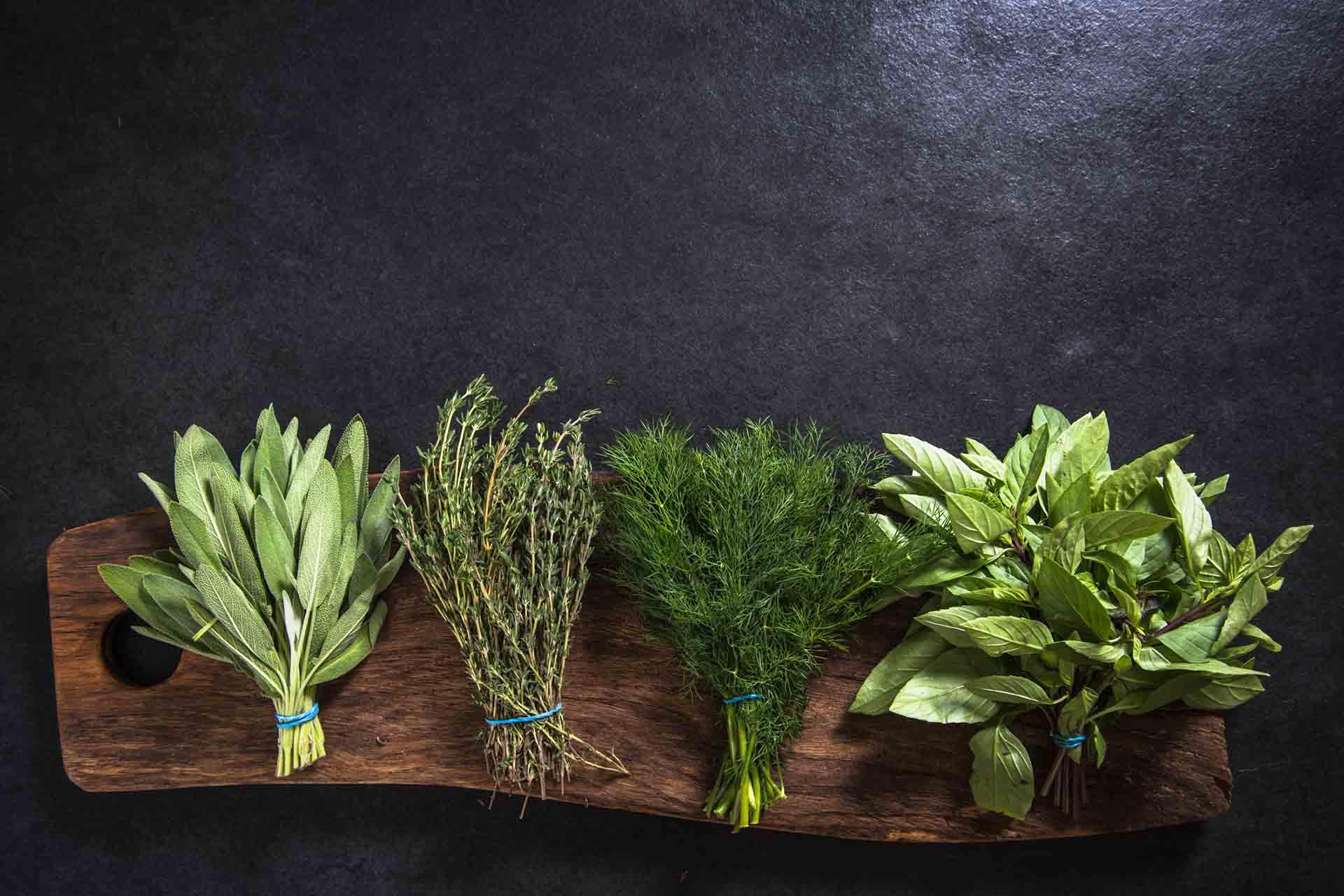 fresh herbs on wooden board.