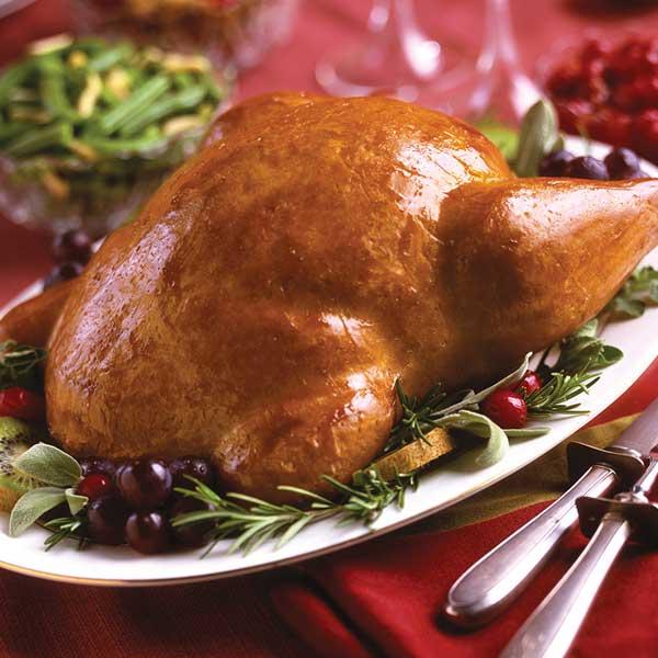 Vegetarian Plus Vegan Whole Turkey | Best Vegan Meat Alternatives for Thanksgiving | Your Daily Vegan