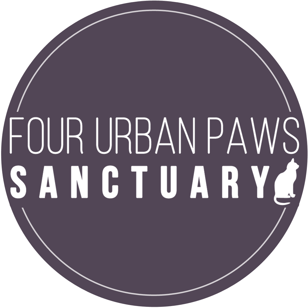 Four Urban Paws Sanctuary | Sanctuary Spotlight | Your Daily Vegan