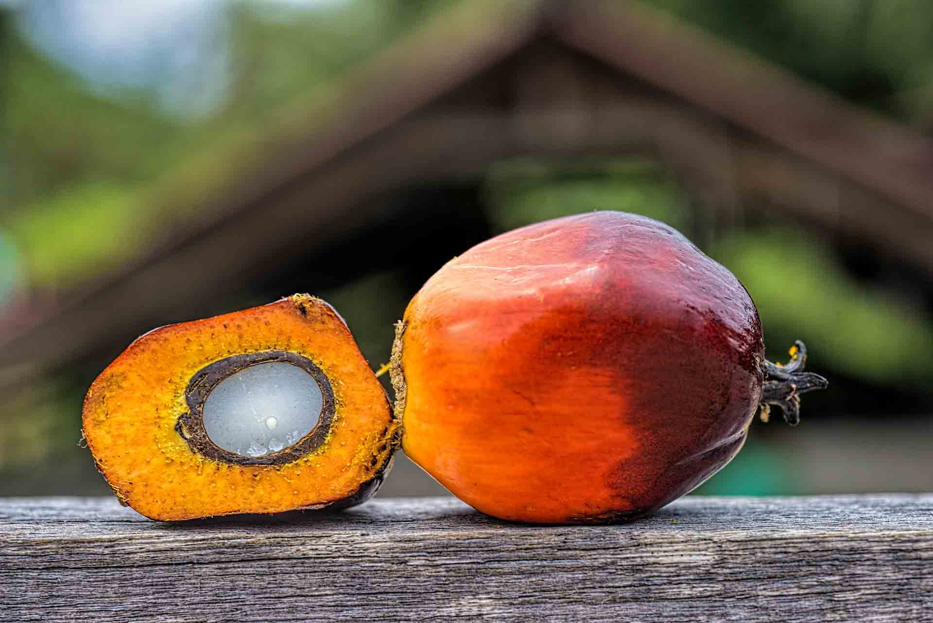 One full oil palm fruit and another cut in half sitting on a wood table.