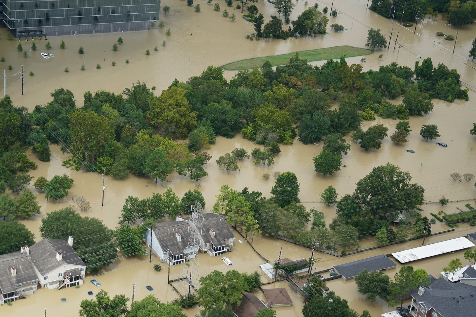 Flooding by Hurricane Harvey, United States - Veganism & the Environment Guide - Your Daily Vegan