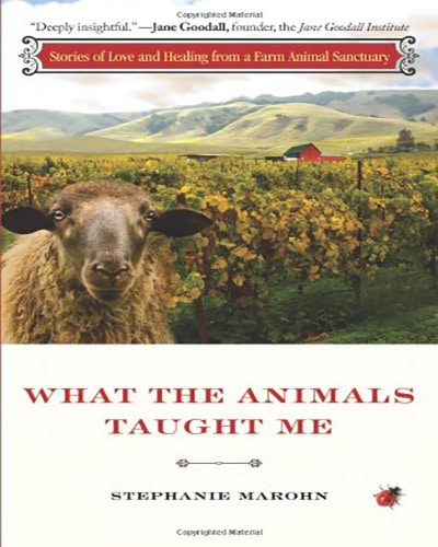 Cover for the book, What the Animals Taught Me. Features a sheep and many rolling green hillsides.