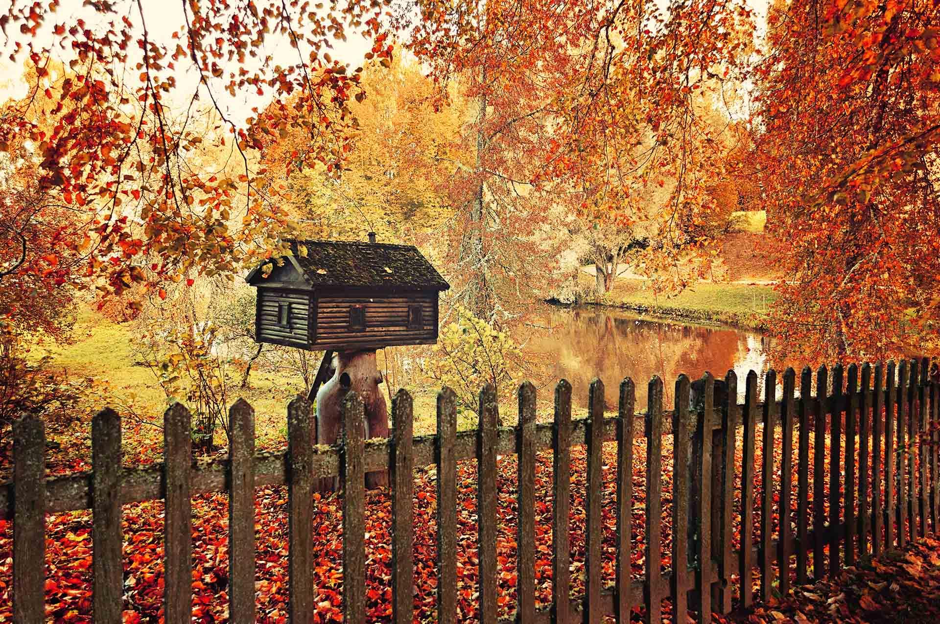 Autumn landscape with wooden bird feeder, focus at the bird feeder.
