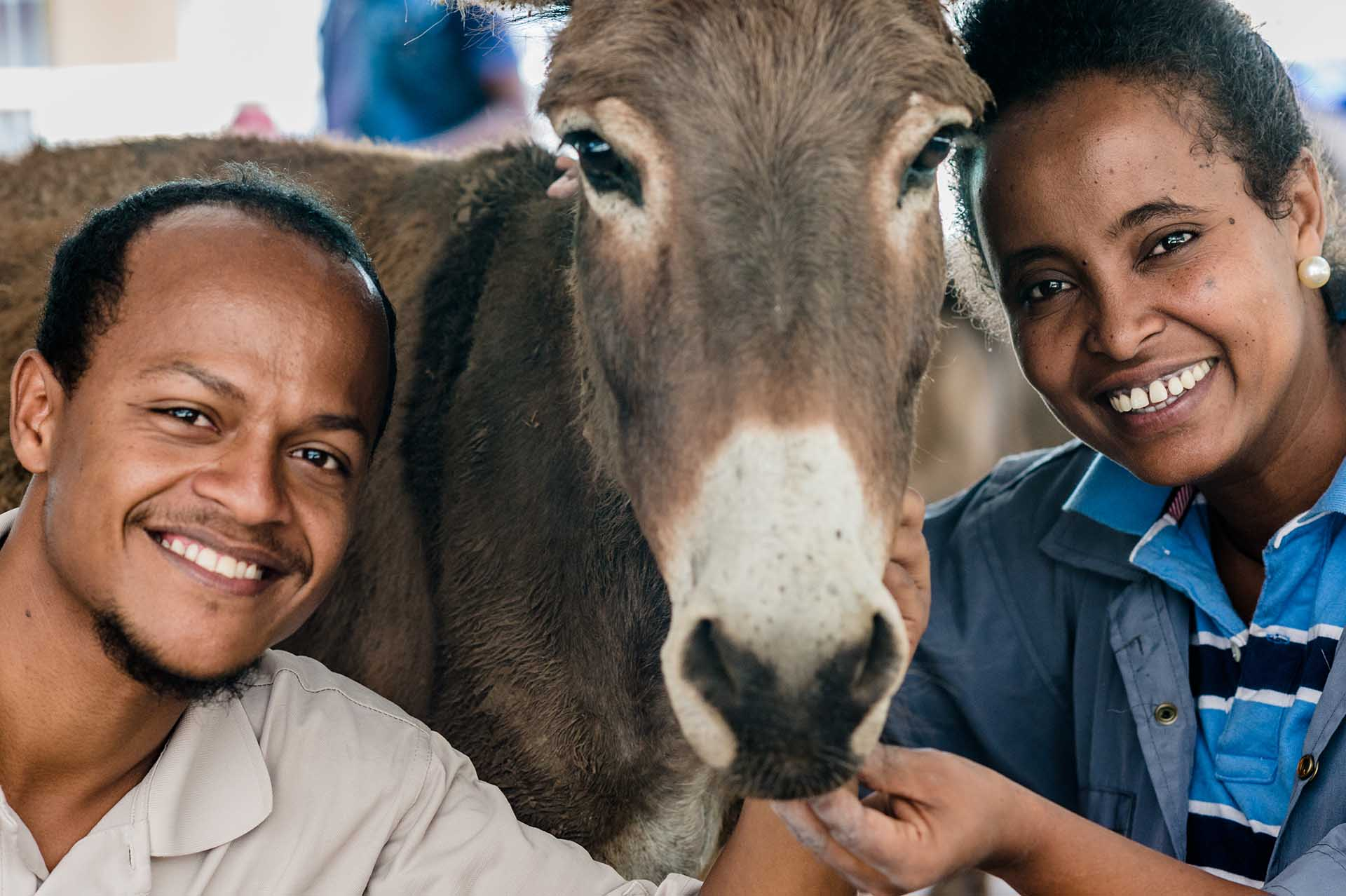 A donkey and staff members at The Donkey Clinic in Ethiopia