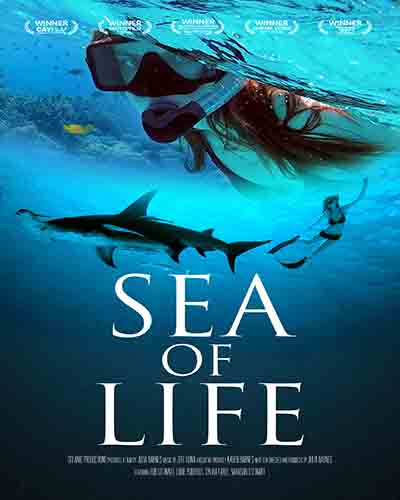 Cover for the film, Sea of Life, featuring an underwater scene with a woman in scuba gear and a shark